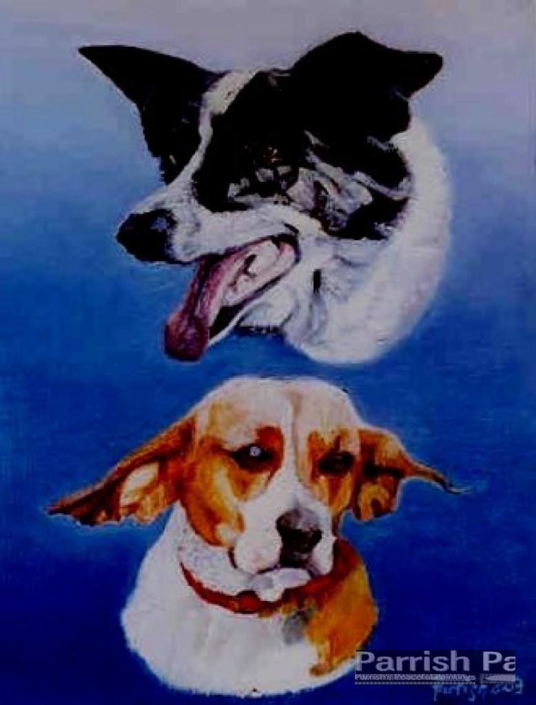 dogs - Copy